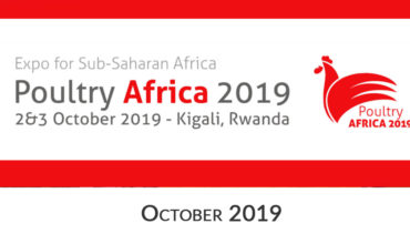 Poultry Africa Catalysis